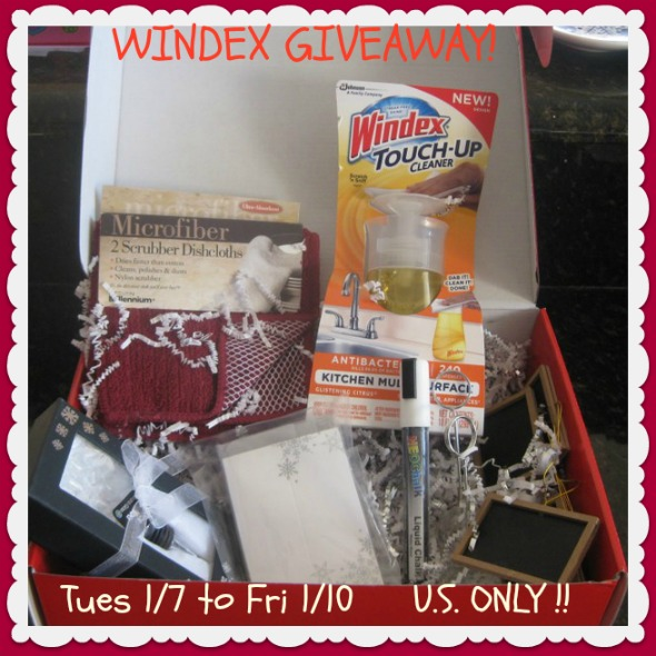 coupons for windex