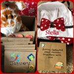 Grandma's CHRISTmas Adventure Box Idea – The Gift That Keeps Giving Month after Month!!